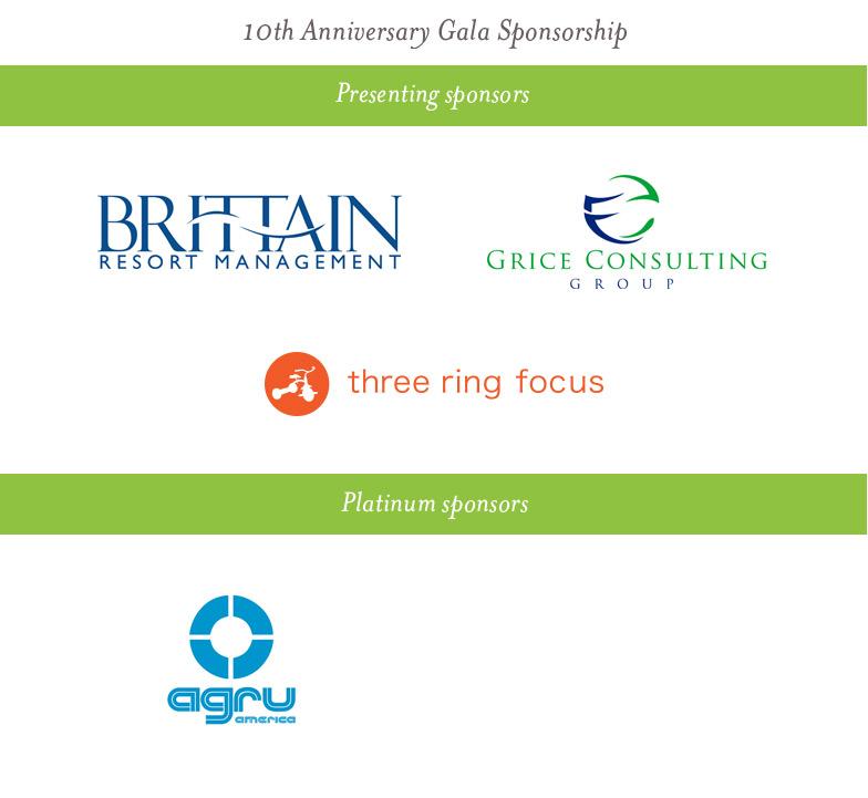 Village-group-sponsors